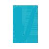 vinted logo 2